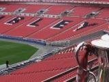 Wembley crown, Spainprawn